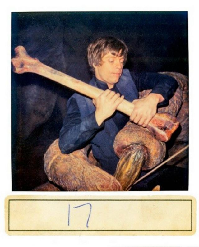Return of the Jedi polaroids