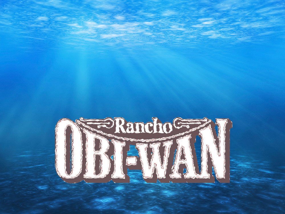 rancho obi wan dee dive tours